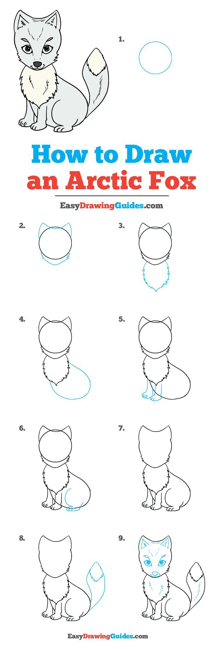 How To Draw A Arctic Fox : arctic, Arctic, Really, Drawing, Tutorial, Easy,