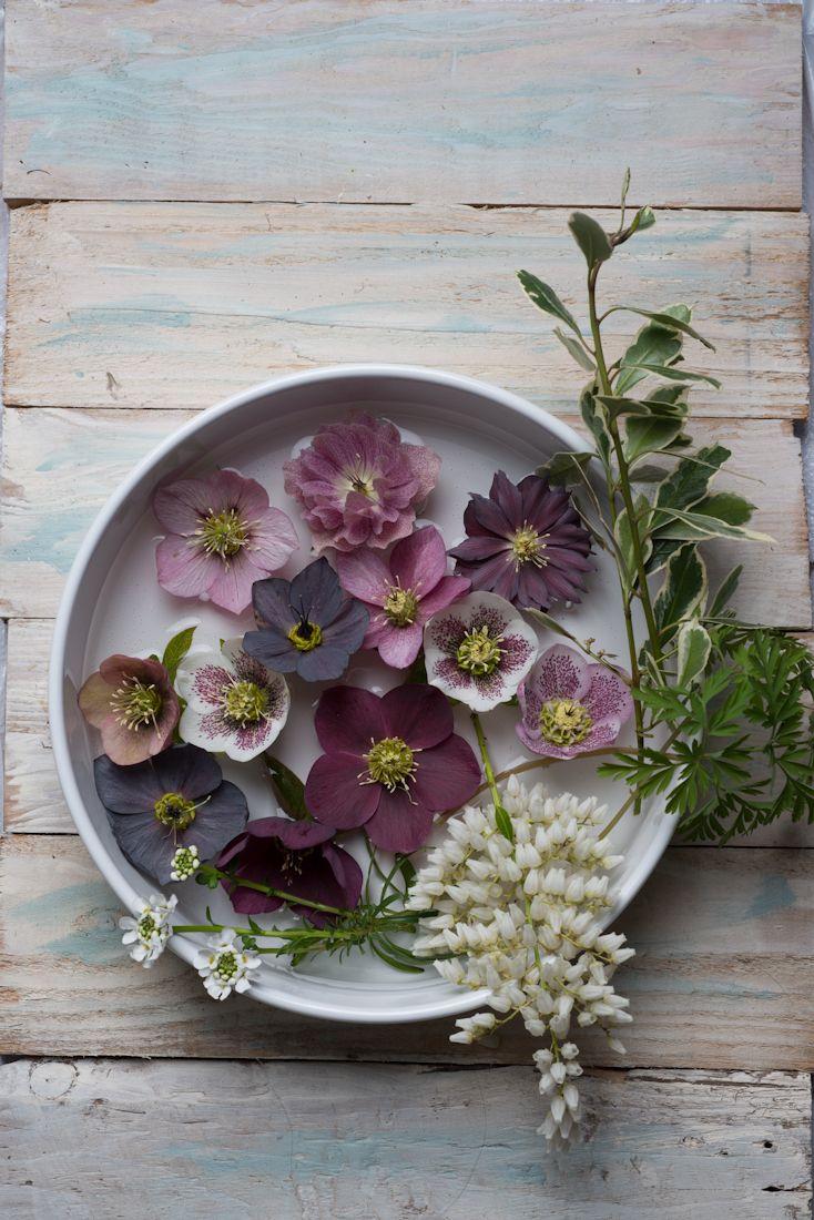 best spring in scandinavia images on pinterest res life black