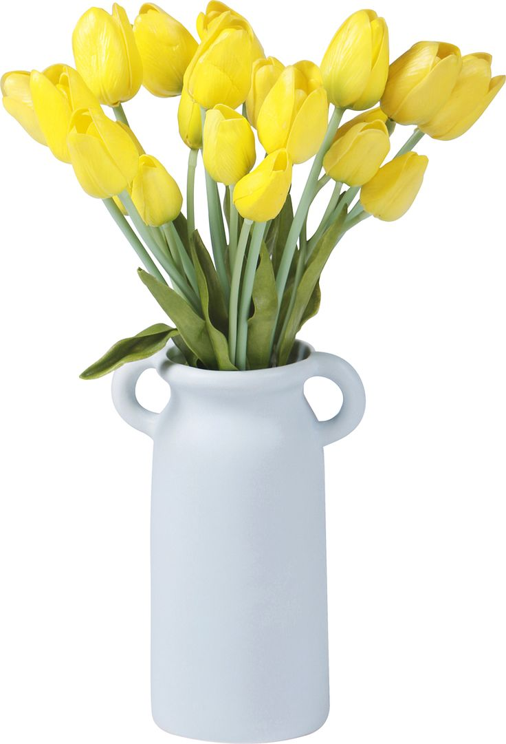 Handle Vase Blue and Yellow -   This classic two-handled vase looks stunning as table center-piece with blossoming flowers. The Small size comes in pastel matt yellow and the Large size comes in pastel matt blue. These ceramic vases will compliment any decor.  larder.com.au