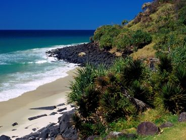 Burleigh Head National Park - A rocky headland protected for future generations to enjoy. Photo: NPRSR.  #Queensland #Australia #Burleigh #Heads
