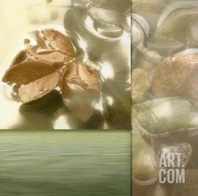 Zen Elements I Art Print by Donna Geissler at Art.com