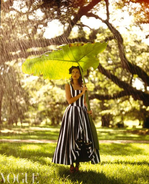 Someday I will find a gigantic leaf and pick it.  And then it will rain, while the sun shines... and I'll have a perfect umbrella.  Sigh... can't wait. It'll be magical.