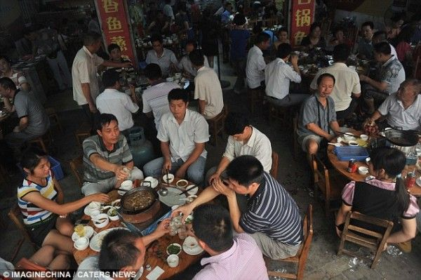 Petition | Oppose 2014 dog eating festival in Yulin, China!  http://www.yousign.org/en/yulin-festival