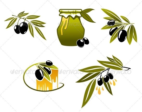 Olive Oil and Branchs