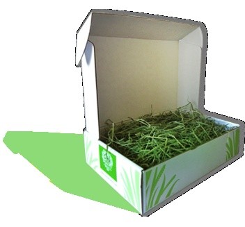 Timothy Hay 8 Lbs -- Small Pet Select Online Store