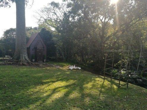 Macnut Farm garden