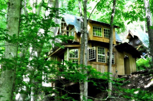 крошечные домики, маленькие уютные дома, маленький загородный дом