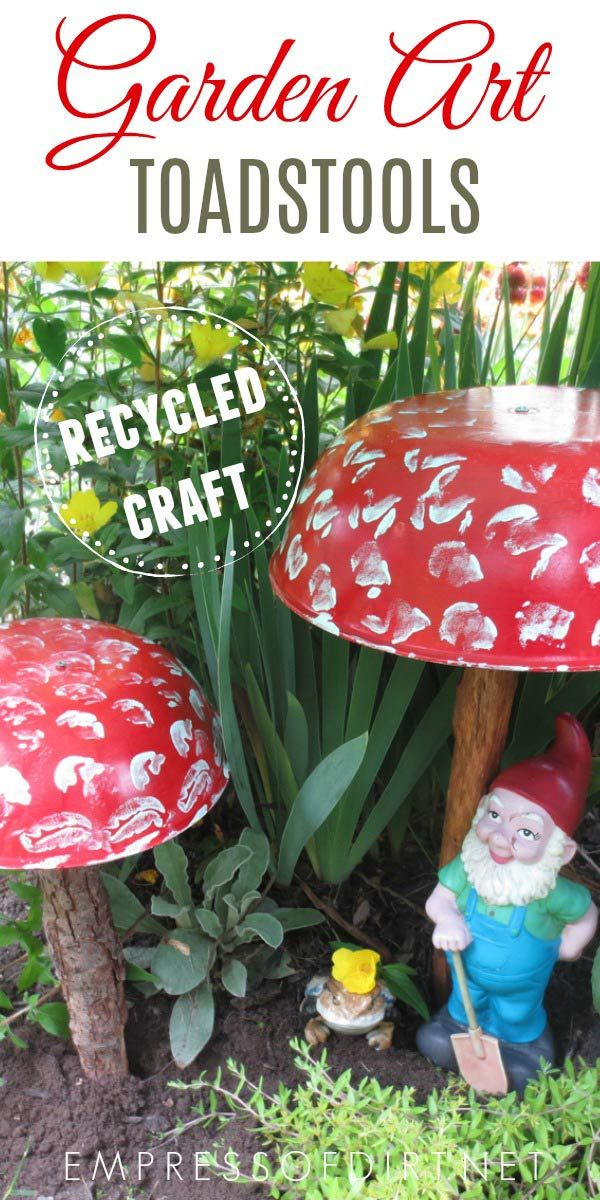 10a3949b8f4e0470e9e2be0ebc915497 - How To Get Rid Of Toadstools In Your Lawn