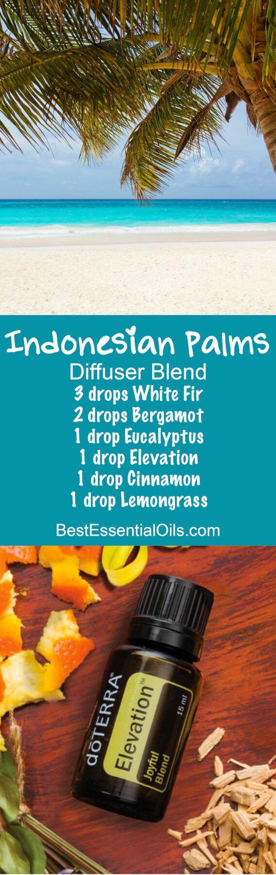 Indonesian Palms doTERRA Diffuser Blend