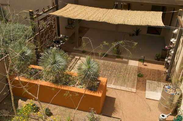 Reed+Fencing+Ideas | in the end i loved the way the reed mats floated over the patio and i ...