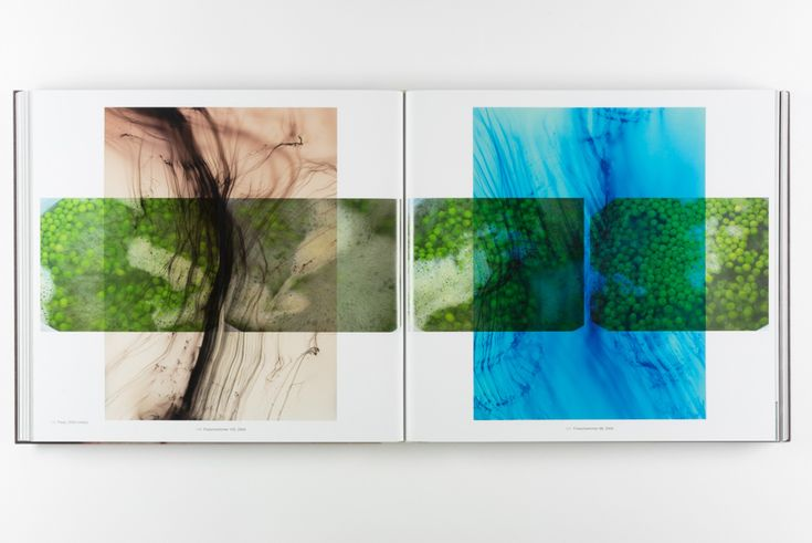 Wolfgang Tillmans  Abstract Pictures</i> (Collector's Edition), 2011