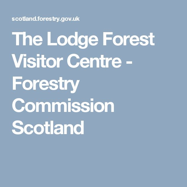 The Lodge Forest Visitor Centre - Forestry Commission Scotland
