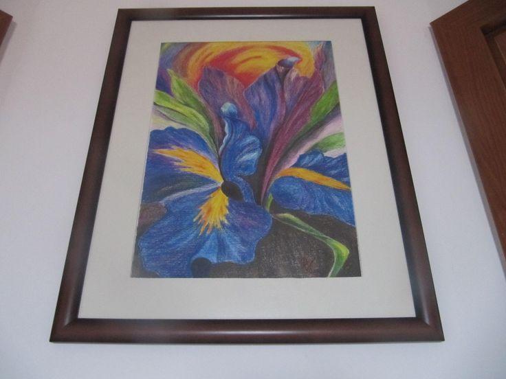 Kosatec v duze watercolor pencils - Iris in rainbow