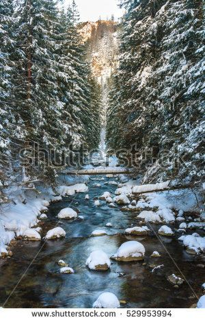 Mountain brook in the winter surrounded by spruce trees beautiful, brook, dolina, forest, koscieliska, landscape, mountains, movement, poland, river, rocks, smile, snow, spruce, tatra, tree, valley, water, winter, wood