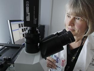 The only machine of its kind in Australia, the brand new Laser Scanning Cytometer holds the key to developing new anti-cancer drugs which directly target cells, resulting in more effective treatment with less side effects. The $600,000 machine was installed as part of a $2 million upgrade funded by the Australian Cancer Research Foundation (ACRF) and is used by a team of 40 researchers at St Vincent's Institute. http://acrf.com.au #cancerresearch #cancer #technology