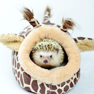 Rede de pequenos animais Esquilo Rato Hedgehog Casa Porquinho-da-Índia Cama Ninho Almofada Gaiola