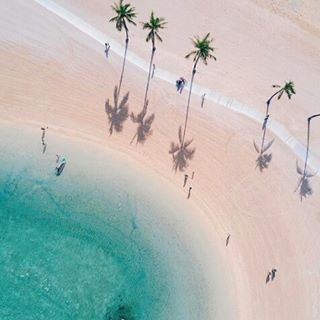 What is your favourite float?!   @henryhwu  #fomo #gameoftones #fromabove #aerialphotography #aerial #drone #minimal #drones #beachlife #travel #fromwhereidrone #palmtrees #shadows #summer #liveauthentic #aesthetic #liveauthentic #wanderlust #beach #water #ocean #summervibes #goodvibes #potd #sun #beautiful #fun #love #moodygrams #instagood