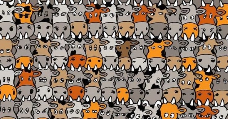 Here Is The Answer To The 'Find The Dog' Picture