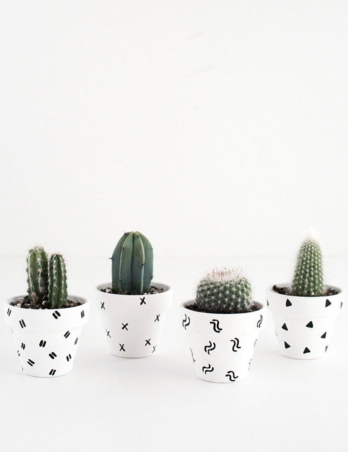 DIY Mini Patterned Plant Pots