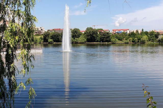 P e t r u     D I M O F F : Iulius Park - Cluj-Napoca