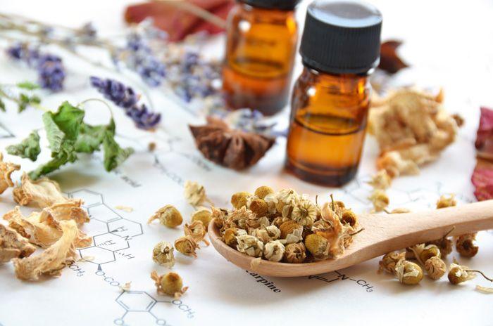 Zarzaparrilla : propiedades, beneficios y dosis recomendada