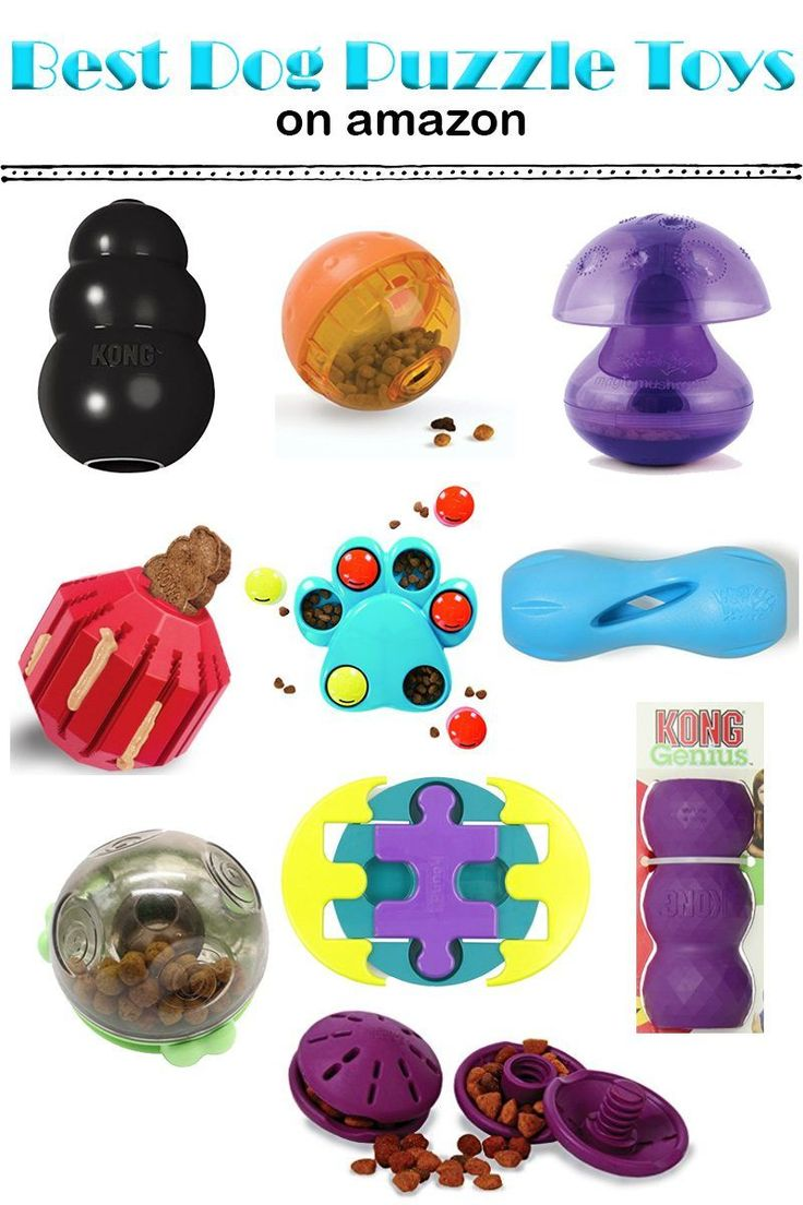 Dog Toys: Top 10 Best Puzzle Toys on Amazon