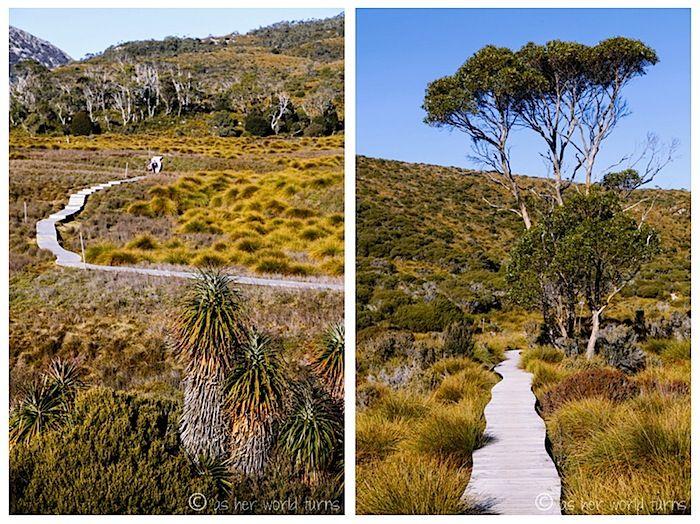 Hiking Cradle Mountain, Tasmania