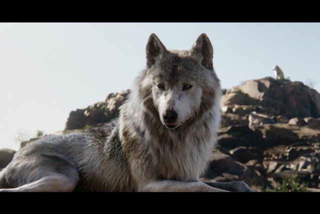 Jax's men in wolf form alternate shifts watching Wolf Rock there are to be three or four wolves there stationed at a time. Making sure invaders stay off his turf and don't taint the sacred rock in anyway.