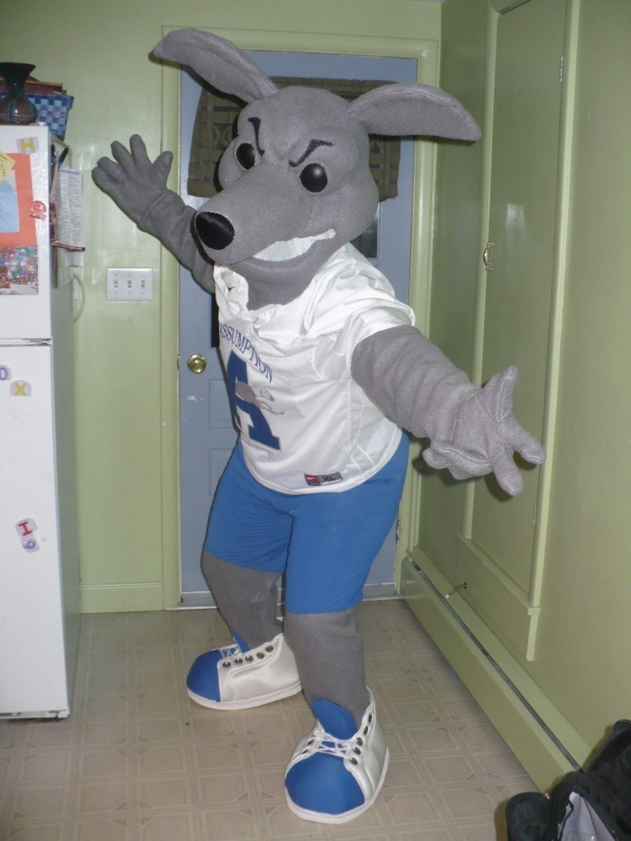 My dad is the offensive coordinator of Assumption Football. This is their mascot.