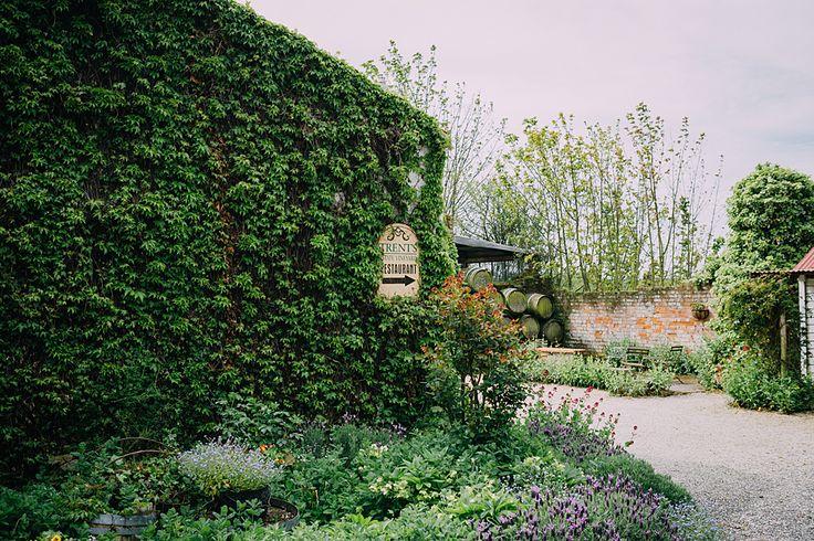 Trents Vineyard in CHCH is stunning!  http://www.teganclarkphotography.com/blog/adele-jarrod