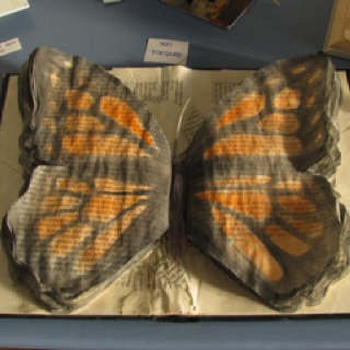 butterfly book #design #fuorisalone #milano