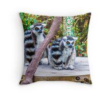 A pair of Orange-Eyed Ring-Tailed Lemurs Throw Pillow