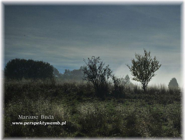 - ...... - Pieniny - POLAND - www.perspektywamb.pl