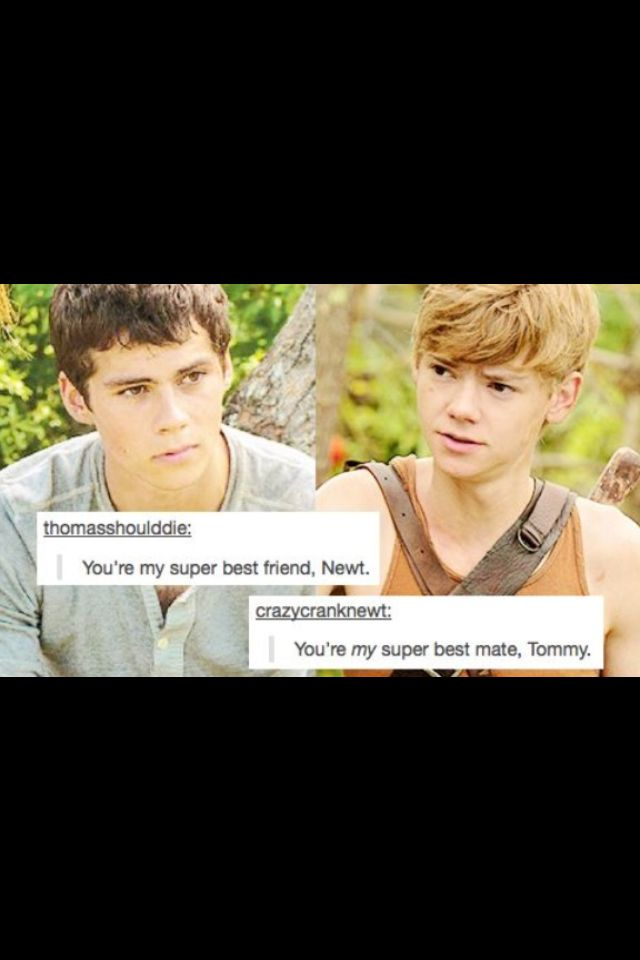 You're the Thomas to my Newt.
