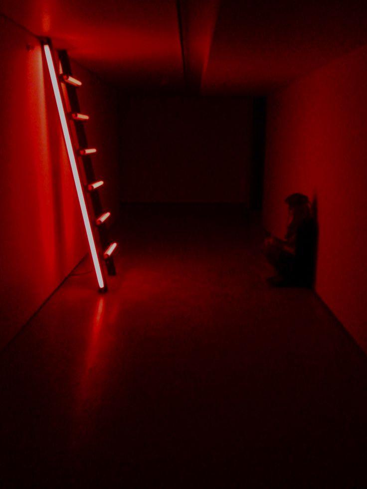 © Sebastián B.  Luna: Dicen que está afuera, en el universo. Pero yo, me la topé acá, en la tierra.