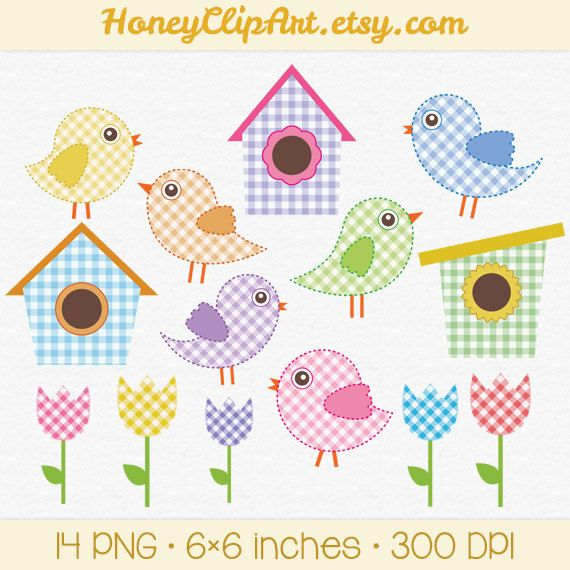 Digital Bird Clip Art Baby Bird Clipart Pink Gingham Blue