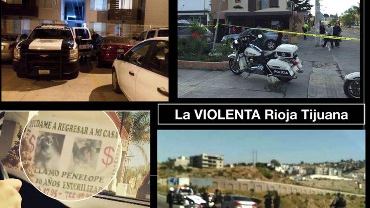 La Rioja Tijuana Residencial Precios de Locura Departamentos Miniatura