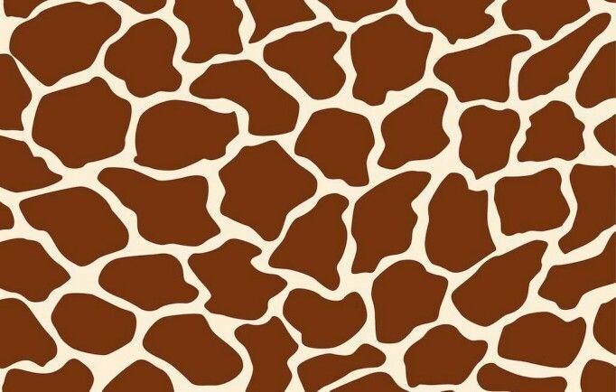 cute giraffe wallpaper animals pinterest giraffe