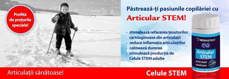 Articular Stem Herbagetica http://herbashop.ro/articular-stem