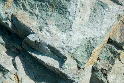 Άρθρο το καθηγητή Νίκου Λυγερού για την πορεία του ελληνικού ζεόλιθου στην περιοχή Μαύρη Πέτρα και Κόκκαλο των Πετρωτών Νομού Έβρου.