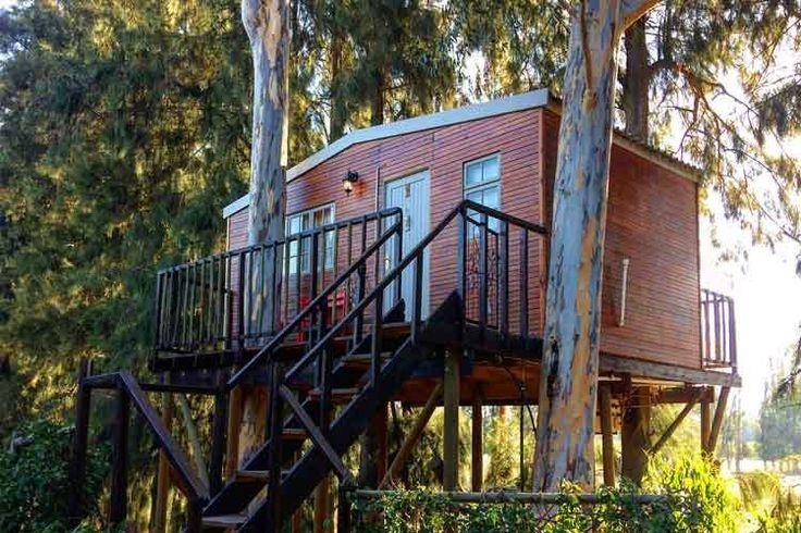 Treehouse Accommodation: Vindoux Guest Farm