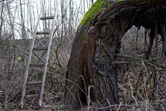Polska wieś. Opuszczone siedliska #abandoned #country