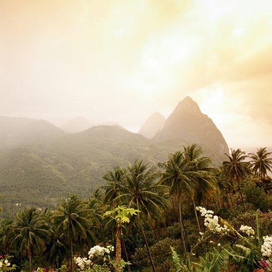 1000+ Ideas About Saint Lucia On Pinterest