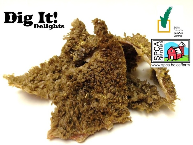 Dig It! Delights - Organic Beef Tripe