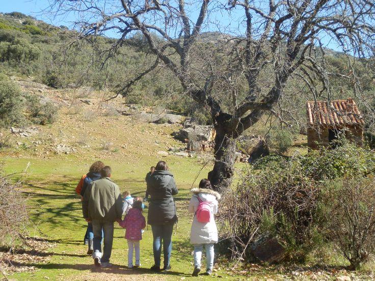 Senderismo Parque Nacional de Cabañeros, distintos niveles de rutas para todos los públicos
