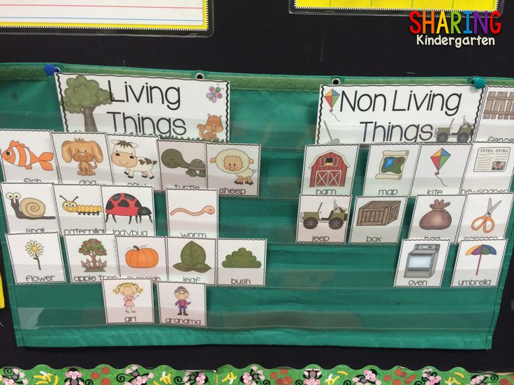 pocket chart sorting FUN your class will love and you will prep easily.