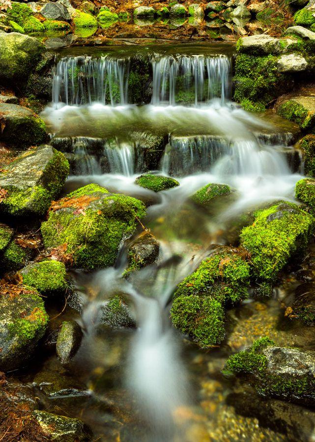 "Fern Spring by Aravind Krishnaswamy on 500px. The smallest waterfall in Yosemite. ""It is probably the smallest waterfall you'll see in Yosemite."""
