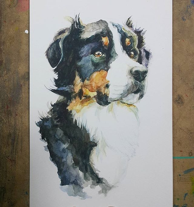 #watercolorpainting #watercolor #watercolors #watercolour #aquarelle #painting #inspiring_watercolors #animal #dog #dogstagram #puppy #drawing #art #artwork #artsy #artstudio #ground37c #강남역 #신논현 #artstagram #그림그리기 #수채화 #드로잉 #그림스타그램 #daily #일상