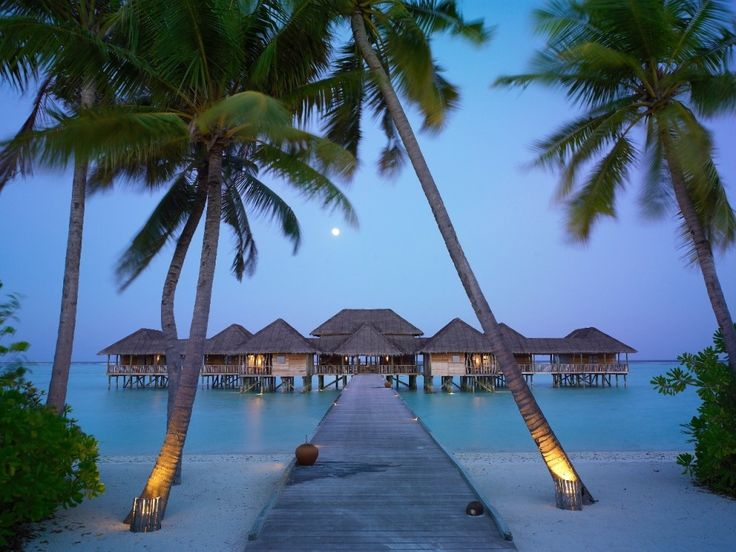 Bungalows in SpainBeach Resorts, Beach House, Dreams, Best Quality, The Maldives, Travel, Places, Cottages Design, Beach Vacations