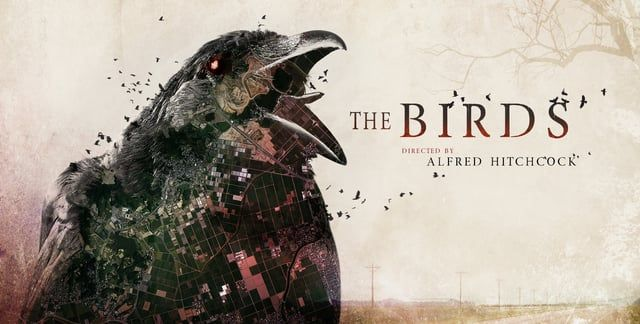 "This is a modern redesign of Alfred Hitchcock's ""The Birds.""  I was very interested in one's evil perception of the birds. My goal was to set the mood for the classic film and aim for a horror/creepy vibe. I employed bold colors (red, black, and tan) with integrated grunge textures to imply dirtiness. Anticipation was another main feeling I wanted to illustrate. This was achieved by slow motion shots overlaid with quick movements. Ultimately this will keep the audience's attention while…"
